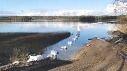 Yhdysvesijohdon upotusvaihe Käyrälammella lokakuussa 2020 (Erkkiheikkilä Oy)
